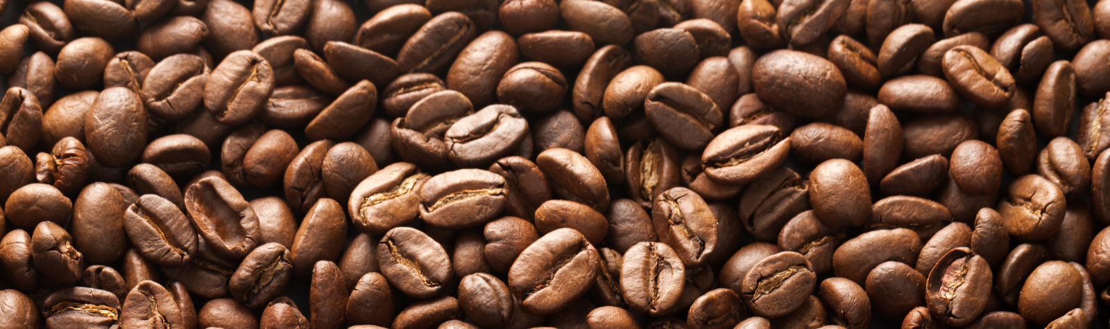 Fuel Productivity: What's the Best Coffee For You?